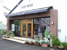 インナーショップ LADY BIRD