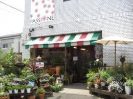 PASSIONE (パッショーネ)