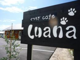 Dog cafe & salon Luana