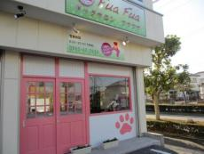 dog salon Fua Fua