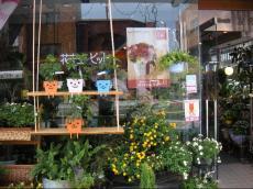 花の店友楽園