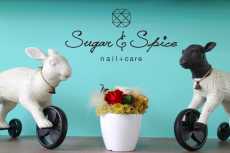 nail+care Sugar & Spice