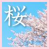 2016年|桜・春のお花見スポット&周辺ショップ特集|岡崎・碧南・刈谷など