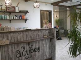 美容室 alypos (上豊田)メンズ&レディース